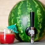 Transformando uma melancia em um recipiente para drinks