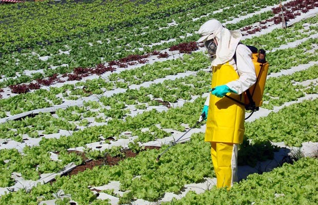 Brasil é o maior consumidor de agrotóxicos do mundo!