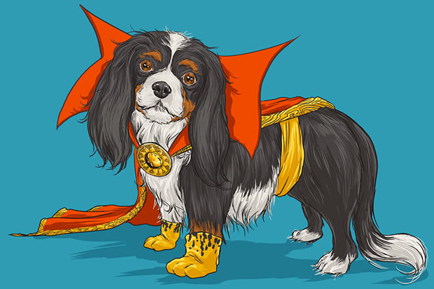 marvel-dogs-8