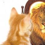 Autoconfiança