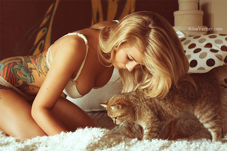 alisa-cat