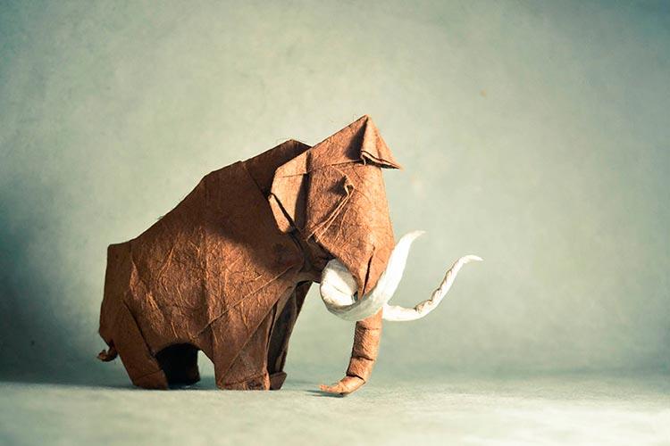 origami-art-gonzalo-garcia-calvo-7