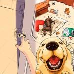 antes-depois-cachorro