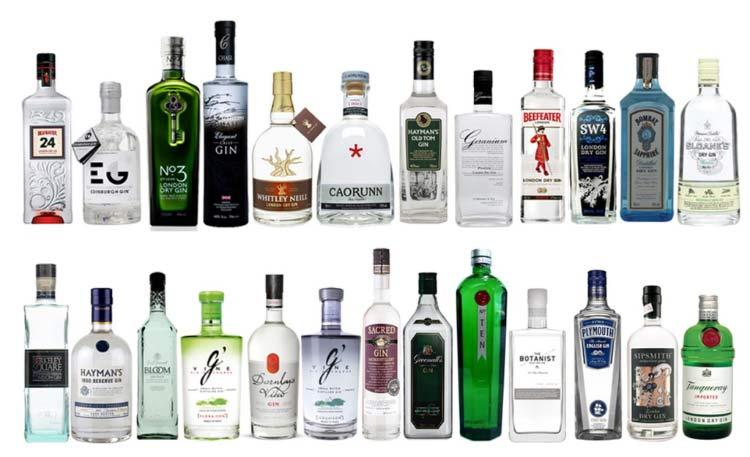 marcas-gin