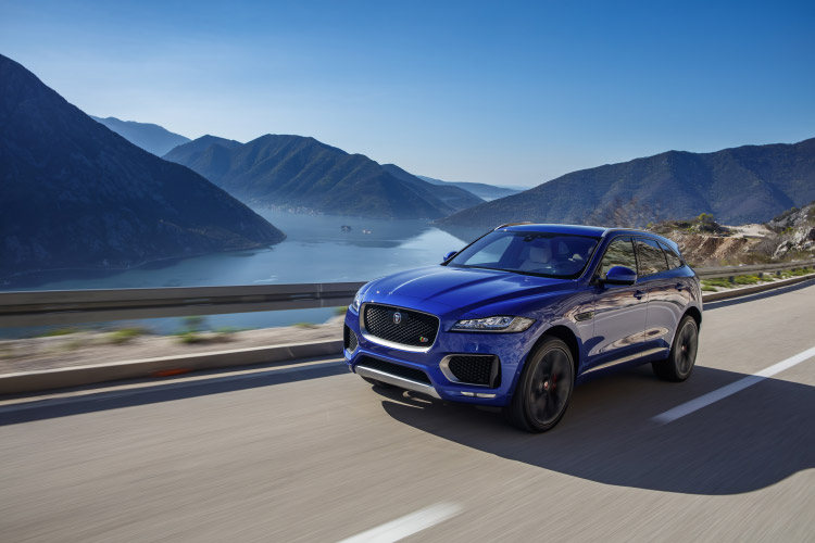 FirstEdition-FPace