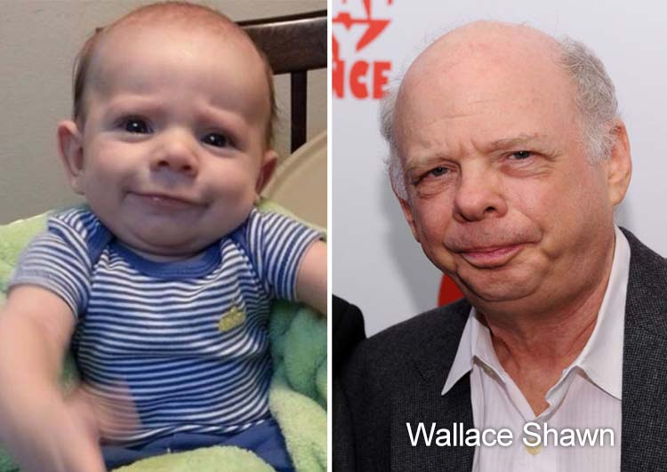 baby-like-Wallace-Shawn