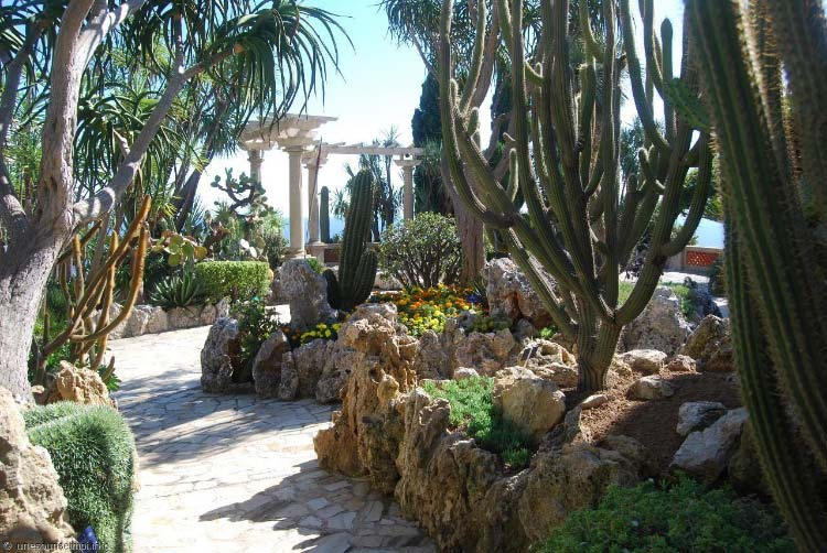 jardin-exotique-de-monaco