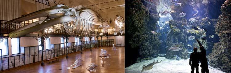 museu-oceanografico-monaco-1