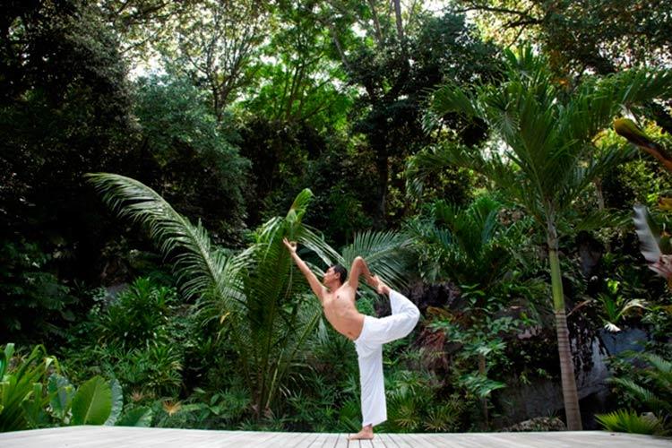 aula-ioga-natureza