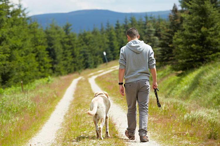 passeando-cachorro