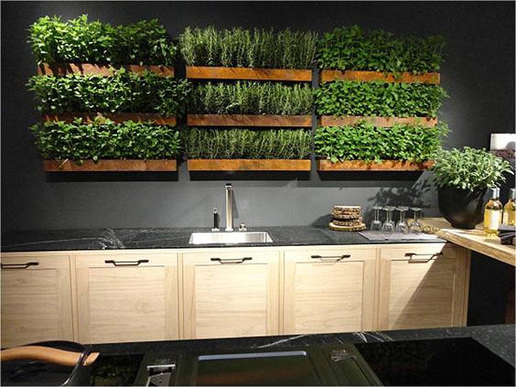 jardim-cozinha