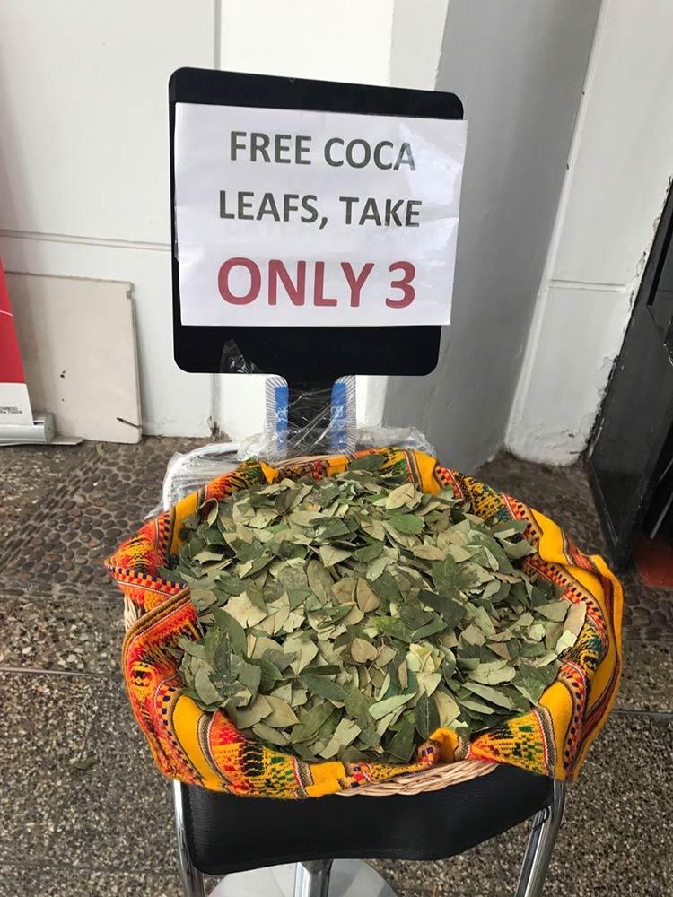 Folha-Coca-Aeroporto