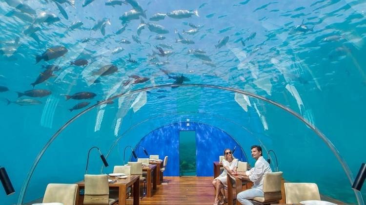 ithaa-restaurante-submerso