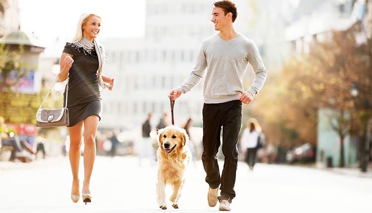homem-cachorro-mulher