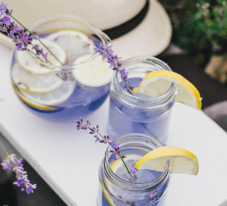 limonada-lavanda-saude
