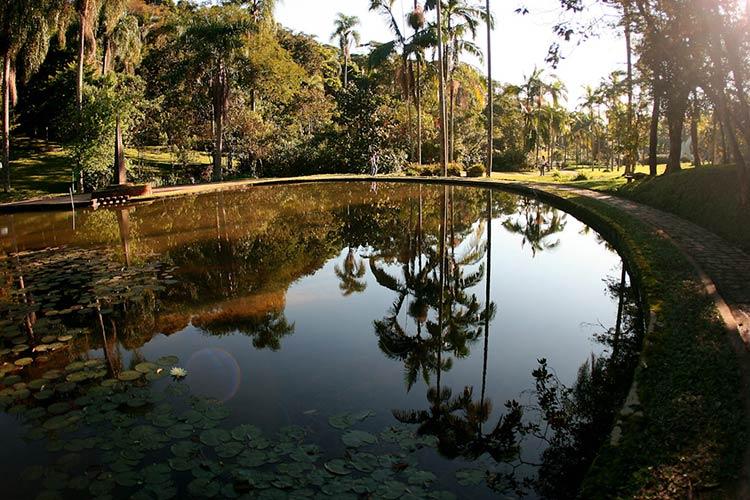 jardim-botanico-sp